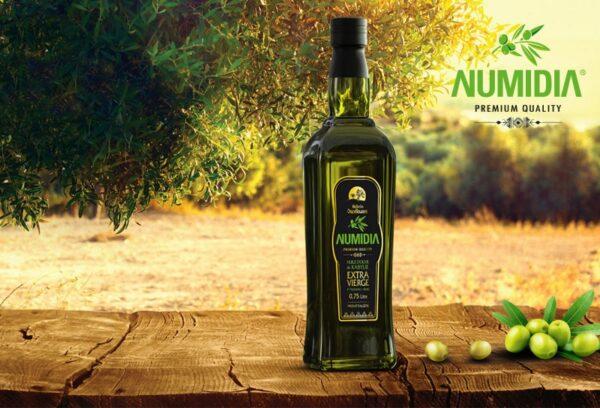 huile d'olive numidia